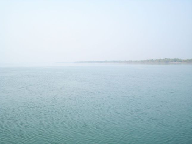 Sundarban (Near Dobanki Tiger Camp)