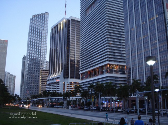 Miami dntn