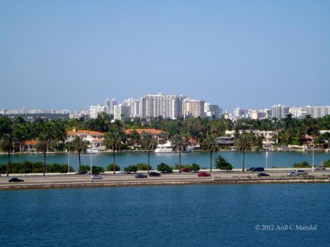 Miami Dntn1_800x600