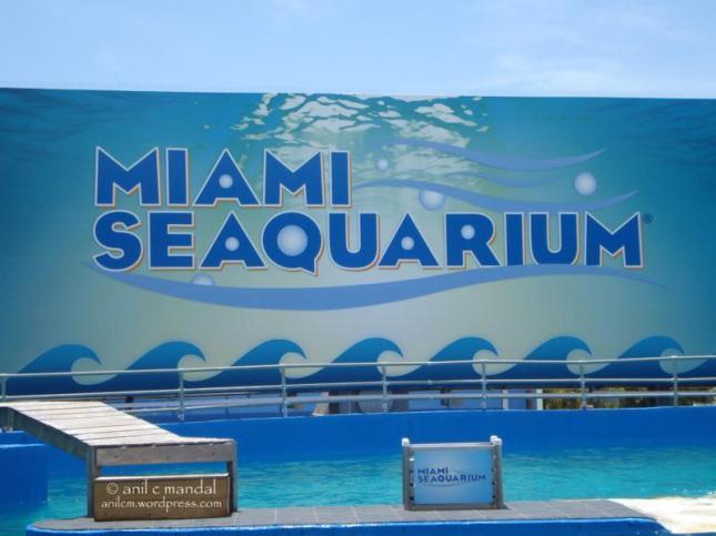 seaquarium3_800x600