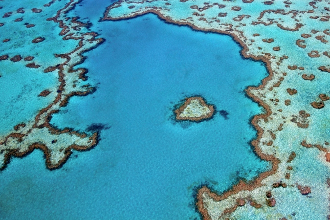 29-Photos-That-Will-Inspire-You-To-Travel-Great-Barrier-Reef-Australia