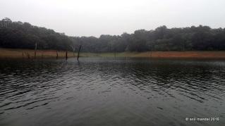 Periyar Lake, Thekkady